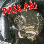 rotteangrep-pa-vannlas-robin-bilde2-150x150-pixa